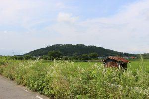 水口岡山城の全景